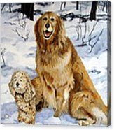 Best Friends Acrylic Print by Sandra Chase