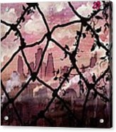 Beyond The Chain Link Acrylic Print
