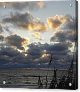 Beyond The Seagrass Acrylic Print