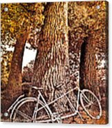 Bicycle Built For Two Acrylic Print by Debra and Dave Vanderlaan