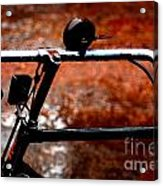 Bicycle Acrylic Print