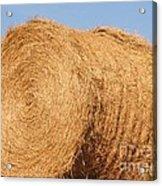 Big Hay Bail Acrylic Print