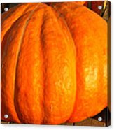 Big Orange Pumpkin Acrylic Print