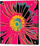 Big Pop Floral Acrylic Print