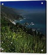 Big Sur California Acrylic Print