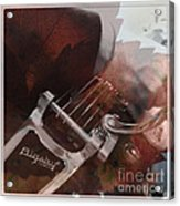 Bigsby Leaves Us Guessing Acrylic Print