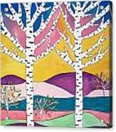 Birch Trees Acrylic Print