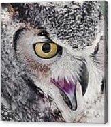 Bird 4 Acrylic Print