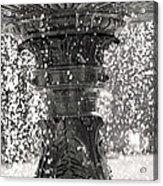 Bird Fountain Of Tears Acrylic Print