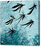 Birdeeze -v03 Acrylic Print by Variance Collections
