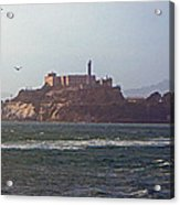 Birds In Free Flight At Alcatraz Acrylic Print