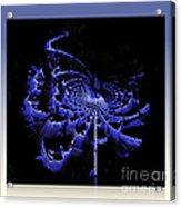 Birth Of Galaxy  Acrylic Print