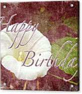 Birthday Greeting Card - Bindweed Morning Glory Acrylic Print