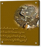 Birthday Party Invitation - Common Toad - Child Acrylic Print