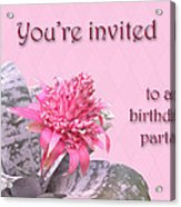 Birthday Party Invitation - Pink Flowering Bromeliad Acrylic Print