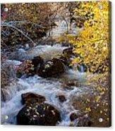 Bishop Creek-2 Acrylic Print