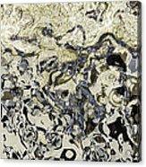 Black And White Abstract IIi Acrylic Print