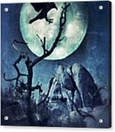 Black Bird Landing On A Branch In The Moonlight Acrylic Print