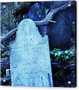 Black Bird Perched On Old Tombstone Acrylic Print