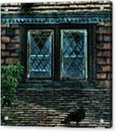 Black Birds Sitting On Roof By Window Acrylic Print