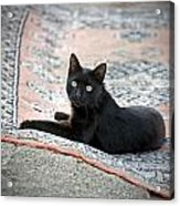 Black Cat On A Persian Rug Acrylic Print