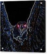 Black Eagle Vision Acrylic Print
