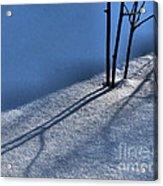 Blackberry Blue Acrylic Print