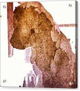 Blind Dog Winston Acrylic Print