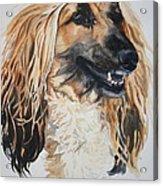 Blonde Acrylic Print by Susan Herber