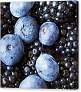 Blue And Black Berries Acrylic Print