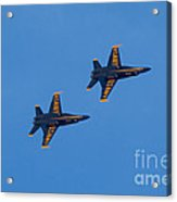 Blue Angel 23 Acrylic Print