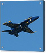 Blue Angel Solo Acrylic Print