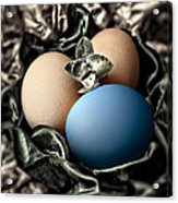 Blue Classy Easter Egg Acrylic Print