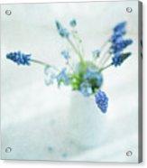 Blue Flowers In White Jug Acrylic Print by Jill Ferry