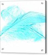 Blue Ghost Acrylic Print