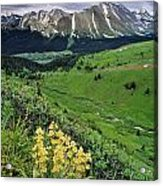 Blue Grouse Pass, Willmore Wilderness Acrylic Print