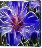 Blue Hibiscus Fractal Panel 3 Acrylic Print by Peter Piatt