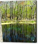 Blue Hole Springs Florida Acrylic Print