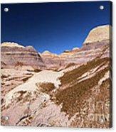 Blue Mesa Landscape Acrylic Print