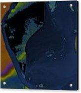 Blue Petal Acrylic Print
