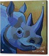 Blue Rhino Acrylic Print