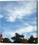 Blue Sky White Clouds Autumn Prints Acrylic Print