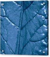 Blue Songs Acrylic Print
