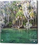 Blue Spring State Park Florida Acrylic Print