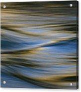 Blue Wave Acrylic Print