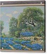 Blue Wildfowers Acrylic Print