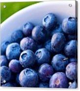 Blueberries Acrylic Print