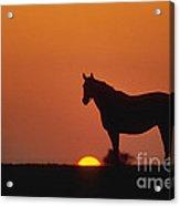 Bluegrass Sunset - Fs000285 Acrylic Print