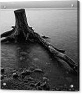 Bluffs Beach Stump Black And White  Acrylic Print