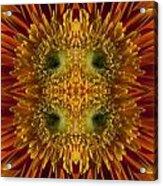 Blumen Art Acrylic Print